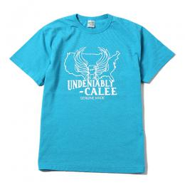 WASHED UNDENIABLY T-SHIRT [16ST047]
