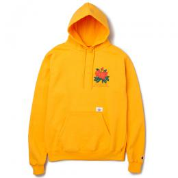 "L/S PULLOVER HOODED""DAVID"""
